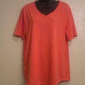 Terra & Sky V-Neck T-Shirts 2 Shirt Bundle